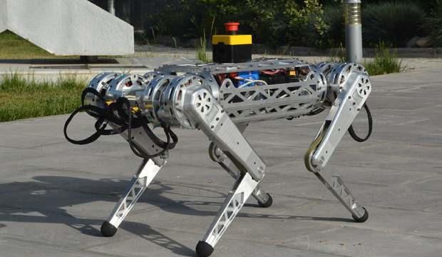 Dört ayaklı robot: Arat