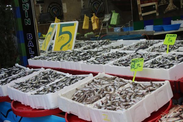 Rize'de kilo fiyatı 5 TL'ye düşen istavrit, kasayla satılıyor