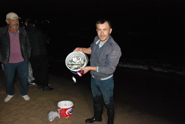 Karadeniz'de istavritleri elleriyle topladılar