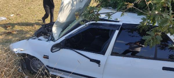 Sürücü emniyet kemeri takarken otomobil ağaca çarptı: 2 yaralı